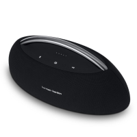 Loa Harman Kardon Go Play Mini